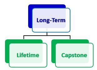 Resume short term goals